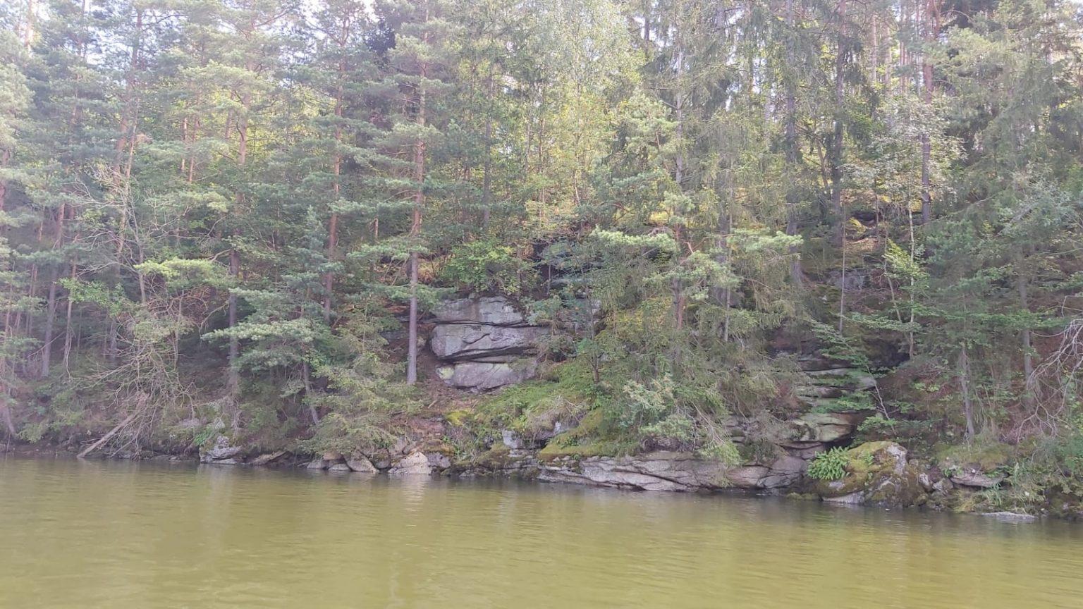 Waldviertel Bioresonanz
